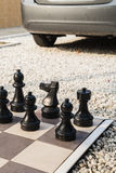 The board of chess in the garden. Stock Photos