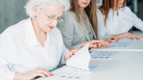 Board directors business women ready infographics. Board of directors. Business women sitting in row examining infographics documents. Getting ready for briefing royalty free stock photos
