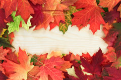 Board with leafs Stock Images