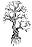 Board oak tree - the scheme black and white electronic structure. Oak tree - the scheme black and white electronic structure as construction model in the form of royalty free illustration