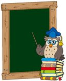 Board with owl teacher and books Stock Photos