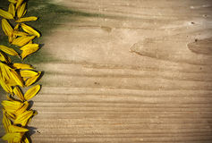 Board panel with yellow sunflower petals. Board wood panel with yellow sunflower petals Royalty Free Stock Photo