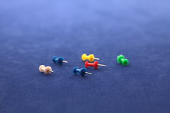 Board Pins Stock Images