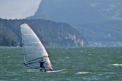 Board sailer Royalty Free Stock Photography
