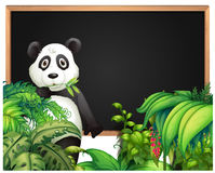 Board template with panda in the woods Stock Photography