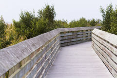 Board walk Stock Images