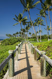 Board walk beside beach, Maui, Hawaii, USA Stock Photos