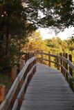 Board walk at Ha Ha Tonka State Park. Board walk trail at Ha Ha Tonka State Park in Missouri, USA, at sunset Royalty Free Stock Photos