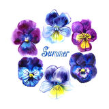 Boarder with hand drawn pansy flowers. Purple, violet, yellow. Frame for cards. Summer lettering Royalty Free Stock Images