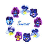 Boarder with hand drawn pansy flowers. Purple, violet, yellow. Frame for cards. Summer lettering Royalty Free Stock Image