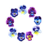 Boarder with hand drawn pansy flowers. Purple, violet, yellow. Royalty Free Stock Photos