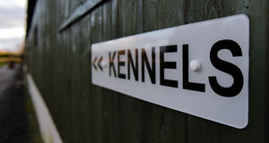 Boarding kennels. Sign on a green wooden shed royalty free stock photography