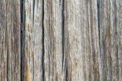boards trägammal textur Arkivfoto