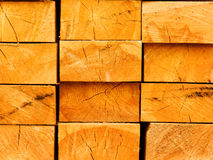 Boards from a tree in a stack Stock Images