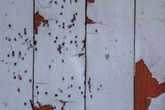 Boards under flaky paint and traces of termites Royalty Free Stock Photo