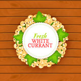 Boards wood background, border with round colored frame composed of white currant. Vector card illustration. Fruit label. Circle currant berries label fruit Royalty Free Stock Image
