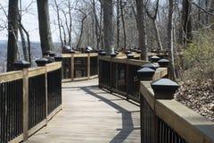 Boardwalk ślad w lesie zdjęcia stock