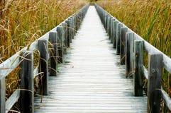 boardwalk Arkivfoton