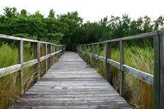 Boardwalk Royalty Free Stock Photography