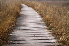 boardwalk Zdjęcie Royalty Free