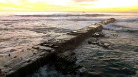 Boardwalk zbiory