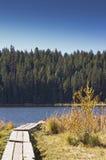 Boardwalk across grassy lake shore Royalty Free Stock Image