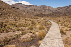 Boardwalk across marshes in Tongariro National Park Royalty Free Stock Photos
