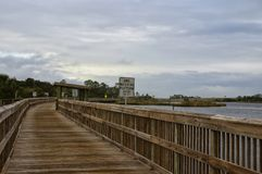 Big Talbot Island State Park, Florida, USA. A boardwalk across marshy ground and lush tropical woods with abundant Spanish moss draping branches of live oak royalty free stock image