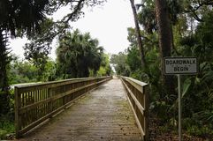 A boardwalk across marshland and lush tropical woods, Big Talbot Island State Park, Florida, USA. A boardwalk across marshy ground and lush tropical woods with royalty free stock photos