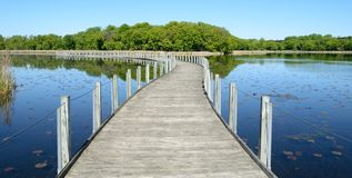 Boardwalk Across a Pond Royalty Free Stock Photo