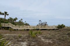 Boardwalk Across Sensitive Natural Area stock images