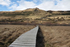 Boardwalk across swampland. To protect environment from damage Stock Photos