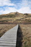 Boardwalk across swampland. To protect the environment from damage Royalty Free Stock Images