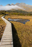 Boardwalk across wetland in Fiordland National Park Stock Image