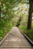 Boardwalk along Hiking Trail at Fort Clatsop Stock Photo