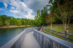 Boardwalk along Lake Wylie, at McDowell Nature Preserve, in Char Royalty Free Stock Photography