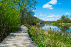 Boardwalk along the river. Stock Image