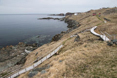 Boardwalk along shore at Grates Cove, Avalon Pen Royalty Free Stock Images
