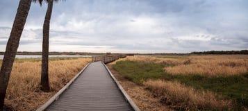Boardwalk along the wetland and marsh at the Myakka River State. Park in Sarasota, Florida, USA Stock Photography