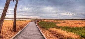 Boardwalk along the wetland and marsh at the Myakka River State. Park in Sarasota, Florida, USA Stock Photos