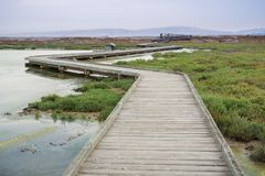 Boardwalk through Alviso Marsh on a cloudy day royalty free stock image