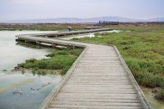 Boardwalk through Alviso Marsh on a cloudy day. San Jose, South San Francisco Bay, California Royalty Free Stock Image