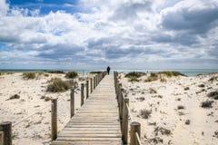 Barril Beach Algarve Portugal. The boardwalk on Barril Beach in Tavira Algarve Portugal stock photography