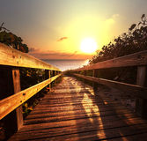 Boardwalk on beach Stock Photography