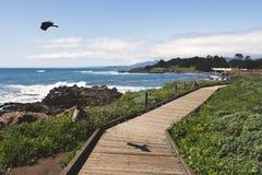 Boardwalk on beach Royalty Free Stock Image
