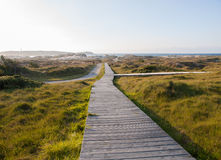 Boardwalk on the beach Royalty Free Stock Images