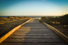 Boardwalk in the beach Stock Images
