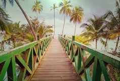 Boardwalk on the beach. Wooden boardwalk on the tropical beach in Costa Rica, Central America Royalty Free Stock Photography