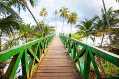 Boardwalk on the beach. Wooden boardwalk on the tropical beach in Costa Rica, Central America Stock Image