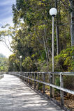Boardwalk. Beautiful boardwalk lined with trees and lamp posts Stock Images